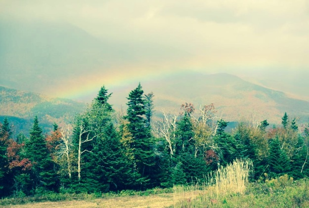 Fall Rainbow_Chris Scott_filter